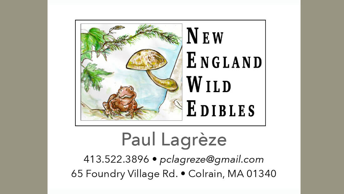 New England Wild Edibles (Business card)